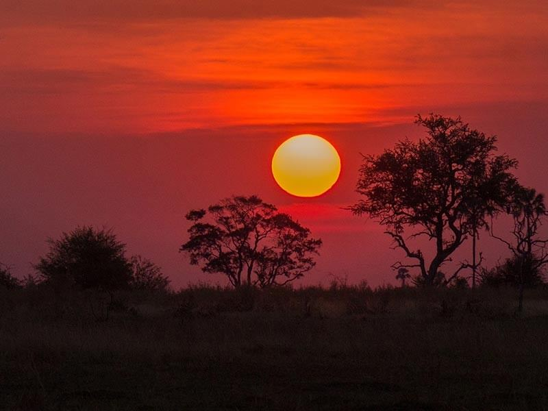 Okavango Sunset, Botswana